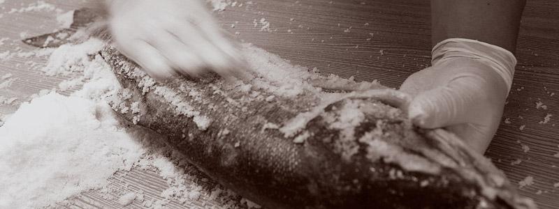 鮭イメージ