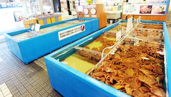 水槽と生きた蟹